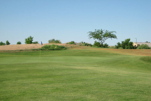 view of green at Cub Course